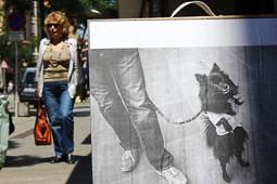 Mostra descalça de fotografia documental, 2015