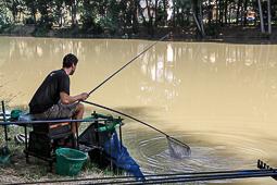 Fira del pescador Roda de Ter