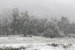 Osona: paisatge i meteorologia (març 2017)