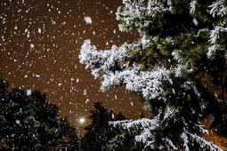 Nevada de la matinada del 5 de febrer a Manlleu