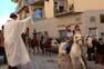 Benedicció dels animals a Sant Pere de Torelló, 2009