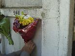 Diada de Tots Sants als cementiris d'Osona Gurb. Foto: Josep Maria Costa