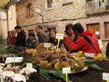 Festa del Bolet de Seva 2010