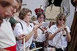 Festa Major de Sant Julià de Vilatorta 2013: trobada gegantera