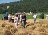 Festa del Segar a Sta. Eulàlia de Riuprimer