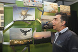 Exposició: «Espai Terra: Catalunya com tu l'has vist» al MIT