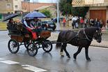 Passant dels Tonis a Folgueroles, 2014