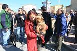 Passant dels Tonis a Sant Miquel de Balenyà 2014