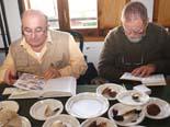 Preparatius de la 15ena Mostra Micològica de Cantonigròs