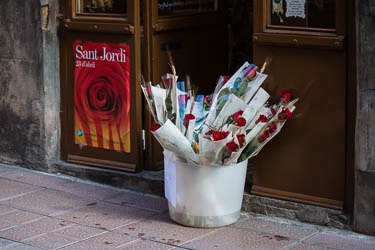 Sant Jordi 2016 a Vic