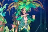Carnaval 2016   Disfressa d'Or a Tarragona