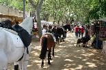 Fira de Sant Isidre 2012 de Cardedeu