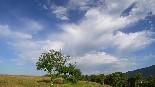 Paisatge i meteorologia (juny 2012, setmana 3) Cànoves.