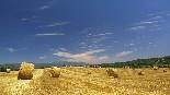 Paisatge i meteorologia (juny 2012, setmana 3) Corró d'Amunt.