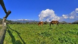 Nevada al Vallès Oriental (febrer 2013) Sant Pere de Vilamajor. Autor: Jordi Rodoreda